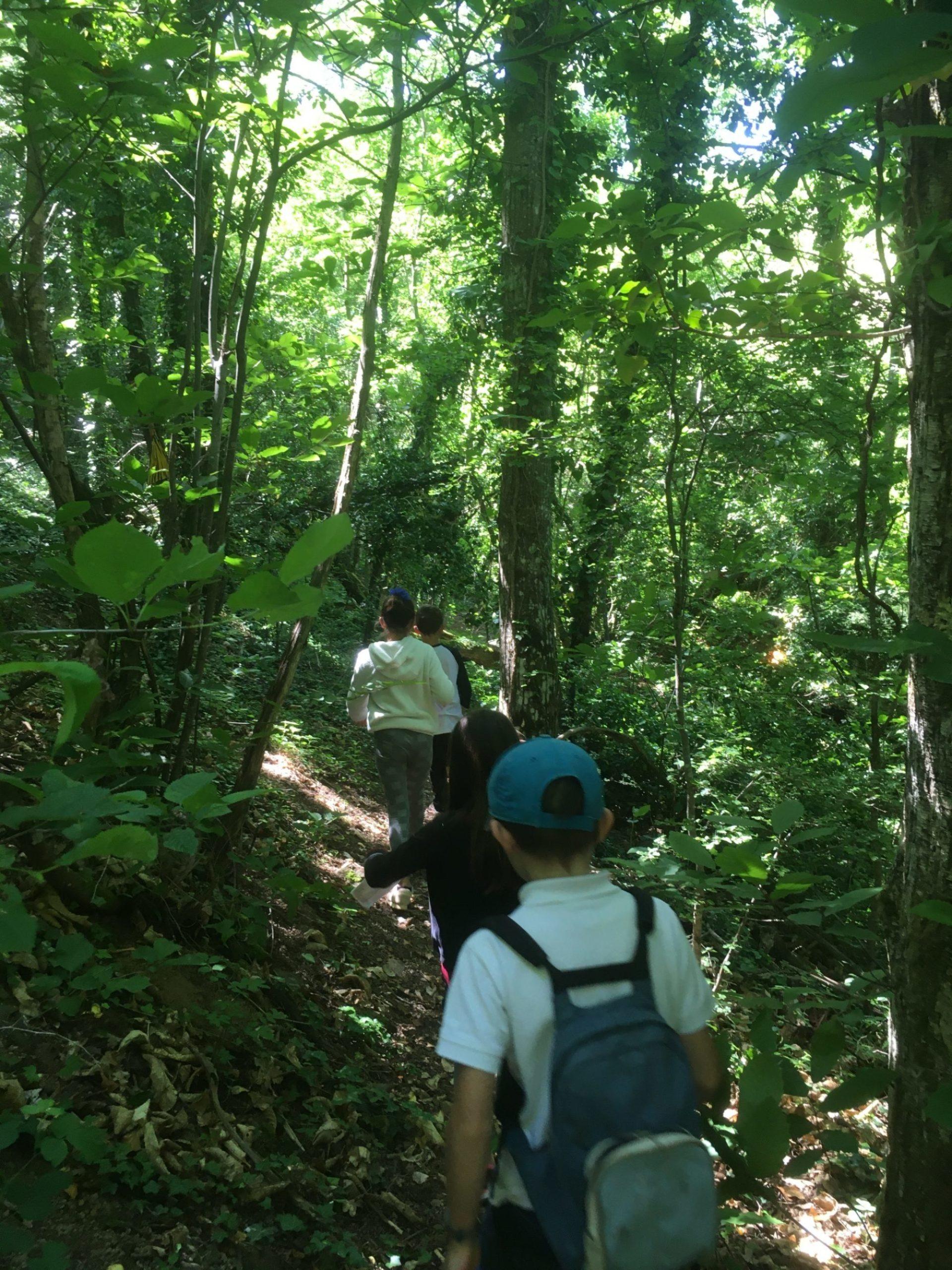 Sentier Nature Montmelas